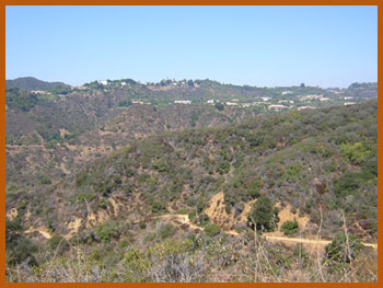 Franklin Canyon Hike